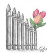 Pan Flute and Tulips